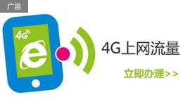 4G流量月包