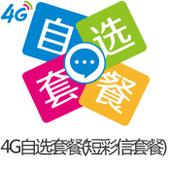 4G飞享自选套餐可选包-短信包