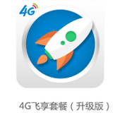 4G飞享套餐(升级版)